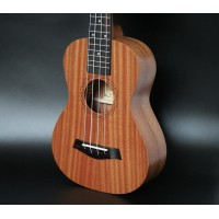 21 inch Sapele guitar UKULELE small Hawaiian Summary him