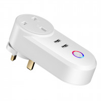 BESTOM WIFI 雙USB無線開關智能插座 | 智能家居 支援 IOS/ANDROID/ECHO/ALEXA/Google Home